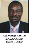Oladeji Picture